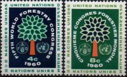ONU UNO NEW YORK ** MNH Poste  78 Et 79 Congrès Mondial Forestier Forêt Forest Baum - New York -  VN Hauptquartier
