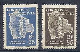 140010491  BOLIVIA  YVERT  Nº  351/2  **/MNH - Bolivia