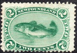 Newfoundland   1896   SG64  2c Green (reissue)   OG - Newfoundland