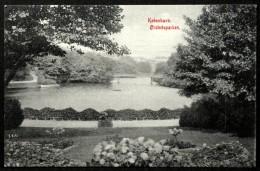 Denmark  Ørstedsparken  København  5-6-1911 ( Lot 2725 ) - Danimarca
