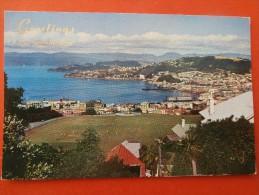 30596 PC: NEW ZEALAND: A Panorama Of Wellington, New Zealand. - Nuova Zelanda
