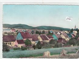 CPM GF - Allemagne - Niederwurtzbach - Vue Générale - Saarpfalz-Kreis