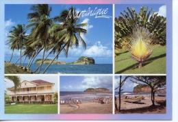 Martinique Multivues : Ilets Sainte Anne Arbre Du Voyageur Musée Rhum Saint James Peche à La Senne (métiers) N°53 - Other