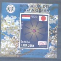 LOQUE BLOCK 50 GUARANIES AEREO BLOC PARAGUAY BLOQUE NUMERADO - MNH TBE - Paraguay