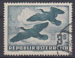 00246 3 Shillings Oiseaux PA 57  Oblitéré Cote 145 - Poste Aérienne