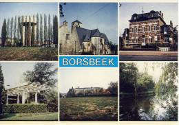 Borsbeek Meerzicht  R De Cock  108/1 - Borsbeek