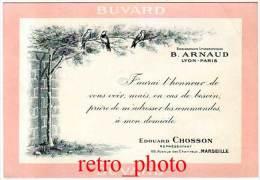 Buvard B. Arnaud, Lyon-Paris, Ets Lithographiques, E. Chosson, Représentant, Marseille - Buvards, Protège-cahiers Illustrés