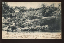 SEYCHELLES - BOTANIC STATION, VICTORIA, MAHE - Seychellen