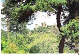 BAS EN BASSET. 3 CP Ruines Du Château Rochebaron - Multivues - Other Municipalities