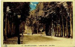 51 CHALONS-SUR-MARNE  Allées Du Jard --  Colorisée - Châlons-sur-Marne