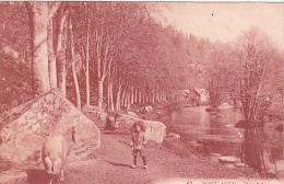 22298 Pont Aven -bois D'amour -ed Le Garrec -arnaud -cochon Enfant Porcher -