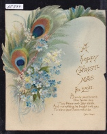 Happy Christmas Feather Of Peacock Goes Out The Card ; Poem Of J. Vogel (12´974) - Cartes Postales
