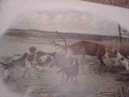 Lithographie JAGD HUNT JAGDHUND ROTWILD  DIMEN.51 Cm X 39 Cm DER ALTE ZEITEN - Sport