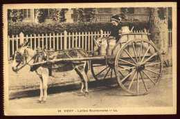 Cpa Du 03 Vichy  Laitière Bourbonnaise       A16 - Vichy
