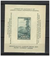USA - 1937 - Usato/used - Esposizione Filatelica - Mi Block 8 - Stati Uniti