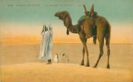 La Prière Du Désert - Algérie