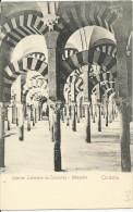 Cordoba - Mezquita - Interior Laberinto De Columnas  - Non Divisée -  Non écrite - Córdoba