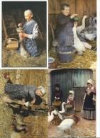 Lot De 6 CPM Thème OIE - Les Oies, Le Gavage, La Gaveuse + Offert : 1 Double, 1 CPM Dindon, Gers LABRESSINGLE Fabrique - Birds