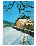 17557 Collie Euganei (pd) Eremo Mon Te Rua - Cartes Postales