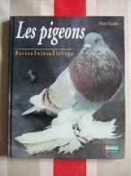 LES PIGEONS - RACES -SOINS - ELEVAGE - DE PIERRE CORCELLE - NEUF - - Animaux