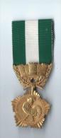 Médaille D´Honneur Départementale Et Communale /Or/35 Ans De Service/France/ Entre 1945 Et 1987   D396 - France