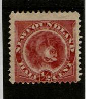 NEWFOUNDLAND 1887 - 1888  ½c  ROSE-RED SG 49 MOUNTED MINT Cat £15 - Newfoundland
