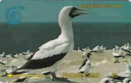 ASCENSION ISL.(GPT) - White Boody Bird, CN : 5CASA, Tirage 5000, Used - Ascension
