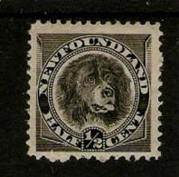 NEWFOUNDLAND 1894  ½c BLACK SG 59 MOUNTED MINT Cat £10 - Newfoundland