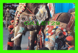 SOUTH INDIA - ELEPHANT'S PROCESSION - DASARA FESTIVAL PROCESSION - PHOTO, V.B. ANAND - VZINDIA PICTURE POST CARDS - - Inde