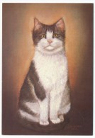 """CPM - CHATS - Illustrateur """"J. Delevau-Sauzey"""" - 6 Cartes Différentes éditions Decoreve - Cats"""