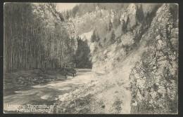 VORDERE THORMÄUER Nestelbachsteg Partie Bei Wienerbruck Gaming Annaberg Lilienfeld Niederösterreich 1905 - Gaming