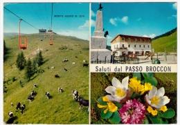 SALUTI DAL PASSO BROCCON - ALBERGO DA S'CIOPPO -  PASSO BROCON - TRENTO - 1979 - Trento