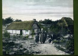 Foto 'Op De Veluwe', Klederdracht, Boerderij, 22 X 27 Cm. - Oude Documenten