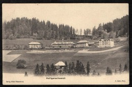 HEILIGENSCHWENDI - HOTEL NIESENBLICK - 1914 - BE Berne