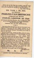 DP: Paulina Van Driessche - De Cock - Hamme - Lokeren - Vieux Papiers