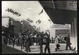 FIERA DI MILANO - 1953 - VIALE DELL'INDUSTRIA - Exhibitions