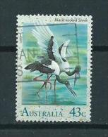 1991 Australia Waterbird,oiseaux,vögel,watervogel 43 Cent Used/gebruikt/oblitere - 1990-99 Elizabeth II
