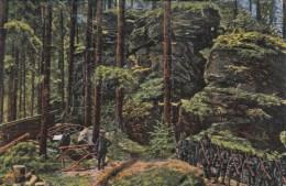 Photocarte Allemande- Am Adlerfelsen In Den Franz. Vogesen 1916 Dép88(guerre14-18)2scans - Guerre 1914-18