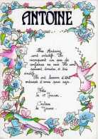 Prenom ANTOINE - Nomi