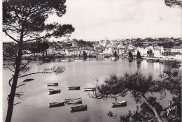 22337 Audierne Le Port -IB 484 Yvon -barque - Audierne