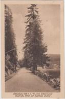 AK -  Schluchsee - Seestrasse 1931 - Schluchsee