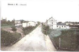 Ribnitz In Mecklenburg Ulmenallee Color Ungelaufen 1907 Verlag G Demmler - Ribnitz-Damgarten