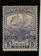 NEWFOUNDLAND 1919 5c   SG 134  MINT  NO GUM Cat £17 - 1908-1947