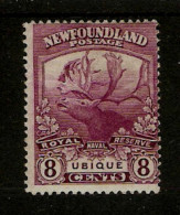 NEWFOUNDLAND 1919 8c   SG 136  MOUNTED MINT Cat £19 - 1908-1947