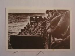 Le Débarquement Allié Et La Bataille De Normandie - 6 Juin 1944 - Les Troupes D'assaut  .. - Guerre 1939-45