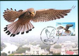 TH Belarus 2010 Bird Of The Year, Kestrel Maxicard MC - Adler & Greifvögel