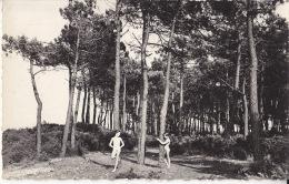 - 80 - La  Forêt Picarde - Dans Les Pins - CPSM - France