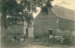 Omal - La Ferme Dallemagne - Attelage Agricole ( Voir Verso ) - Geer