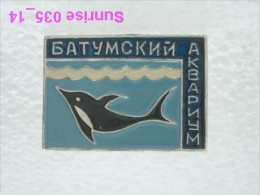 Animals: Dolphin - Batumi Aquarium / Old Soviet Badge_035_an3667 - Animals