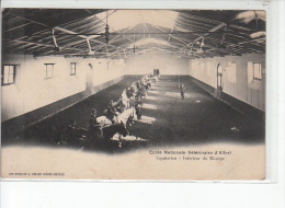 Ecole Nationale Vétérinaire D´ALFORT - Equitation - Intérieur Du Manège -très Bon état - Maisons Alfort